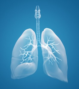 How to Breathe Properly - A (Surprisingly Important